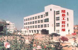 淄博隆恩工程纤维有限公司