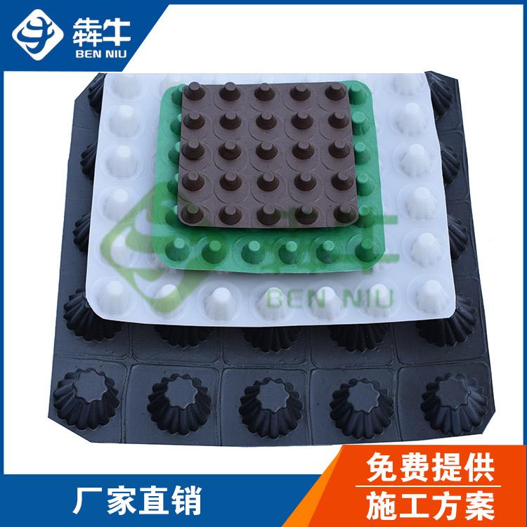郑州市20高成卷车库排水板型号齐全