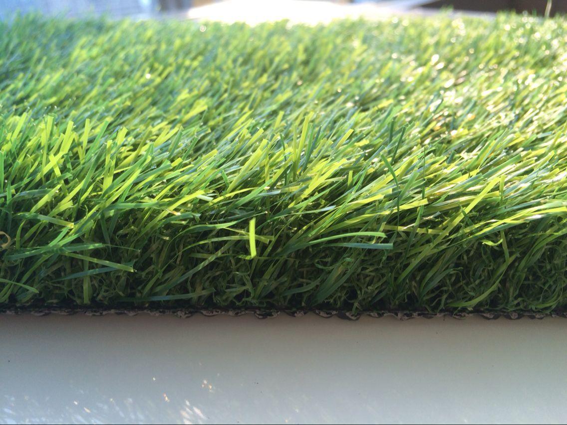 潍坊围挡草坪-装饰绿化草坪厂