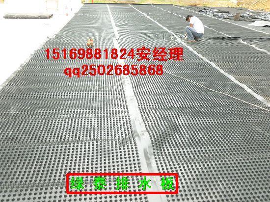 昌都屋顶绿化排水板_车库蓄排水板供应