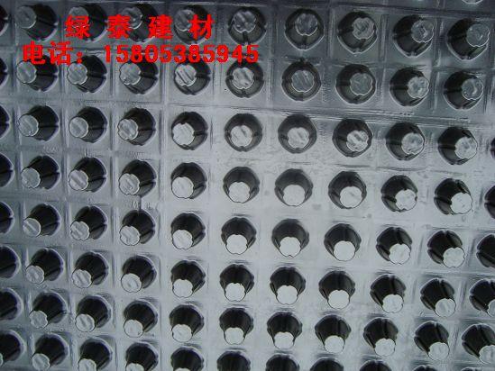 供应滁州车库阻根排水板#房产建筑排水板