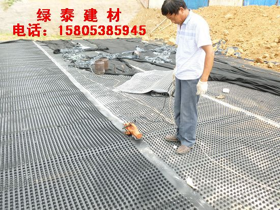 铜陵车库底部排水板/覆土排水板@供应厂家