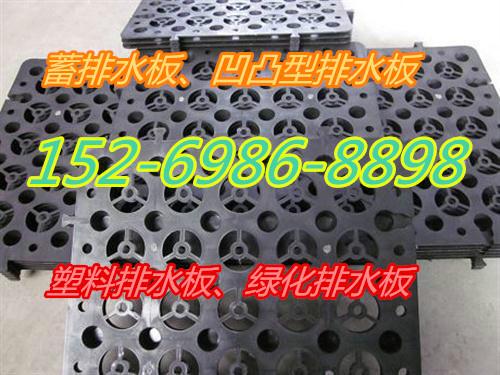 塑料排水板_地下车库排水板_屋顶绿化排水板厂家