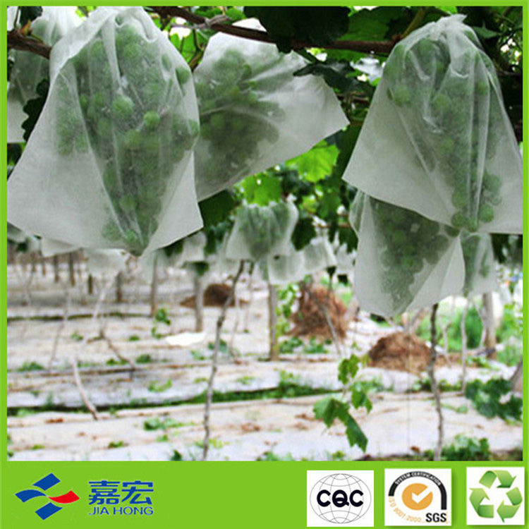 PP无纺布植物罩