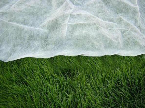 农业用纺粘无纺布