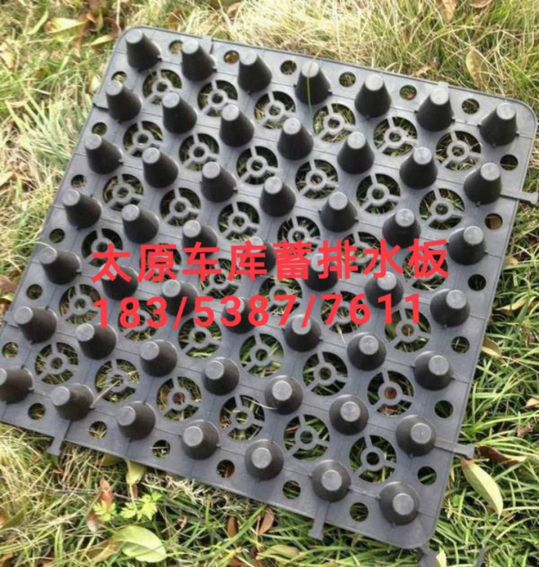 车库排水板/太原车库蓄排水板/山西排水板厂家