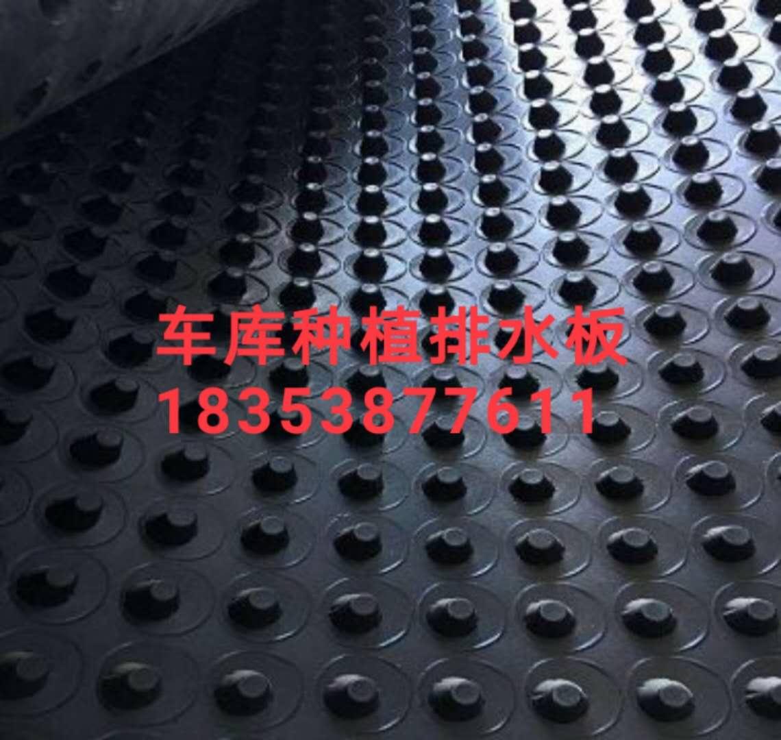 镇江(车库顶板蓄排水板)厂家-免费寄样品