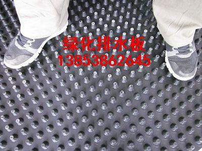 北京园林屋顶绿化专用(――北京排水板)
