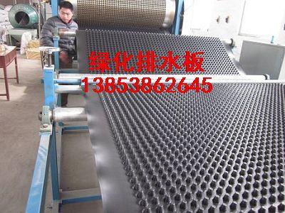北京)北京绿化专用排水板销售,北京销售排