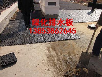 河北销售―绿化排水板蓄排水板防根刺卷材