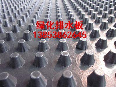 山东聚乙烯排水板((凹凸塑料排水板))