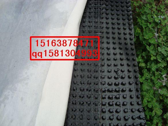 赤峰蓄排水板价格#乌海排水板施工供应土工