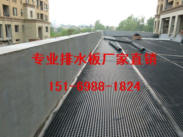 广安1.5公分地下室底板排水板