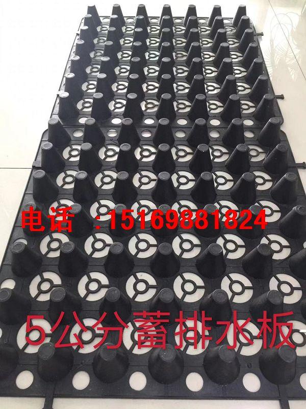 北京\天津30高25高20高蓄排水板价格